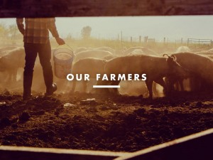 Our Farmers