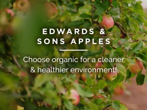 Edwards & Sons Apples