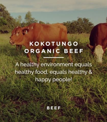 Kokotungo Beef