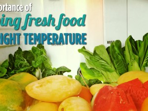Keeping fresh food at the right temperature