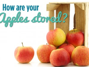 How are your apples stored?
