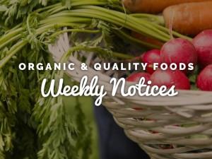 Weekly Notices 3716