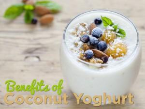 Benefits of Coconut Yoghurt