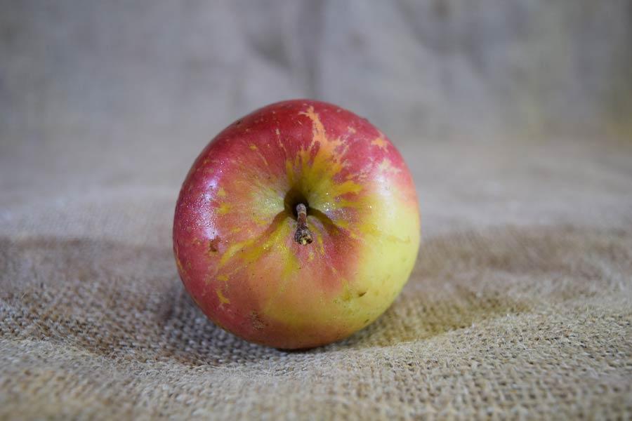 Apples Fuji (100g)