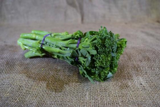 Broccoli BABY (Bch)