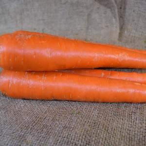 Carrots 1st GRADE (kg) SPEC
