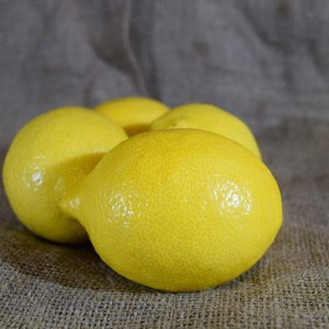 Lemons (kg)