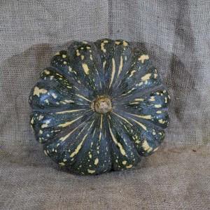 Pumpkin JAP Whole (2-4 kg) (kg) SPEC