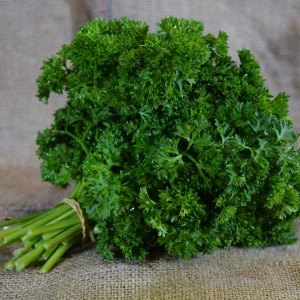 Herbs ... Parsley Curly (Bch)