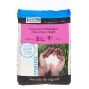 Wheat_CF_Organic-Unbleached-Cake-Flour-Soft-1kg-300x300